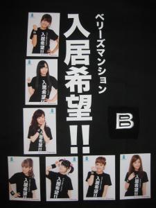 Berryz Mansion - T-shirt